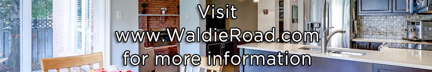 Go to www.WaldieRoad.com